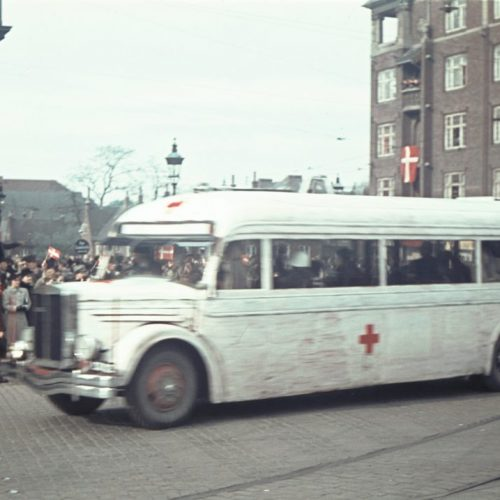 The White Buses, who rescued over 17,000 people out of the concentration camps in Germany during World War II, Ca. 1945. The National Museum of Denmark Collection.