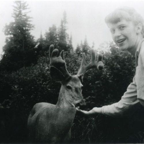 Sylvia Plath feeding deers.  Algonquin Provincial Park , Ontario, Canada , July 1959