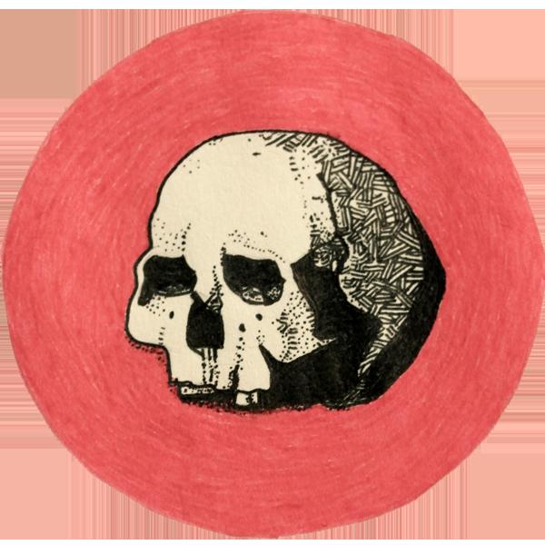 Daniel Ivan / Artista Multidisciplinario / Multidisciplinary Artist